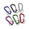 Medium Climbers Clip / Carabiner Key Chain